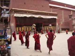 Sakya monks moving meditation